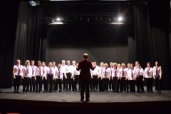 David on stage with the Watford Palace Theatre Community Choir